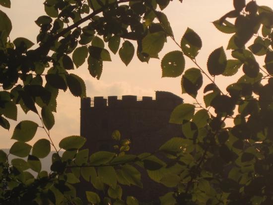 Le torri medievali di Certaldo Alto (FI) (1684 clic)