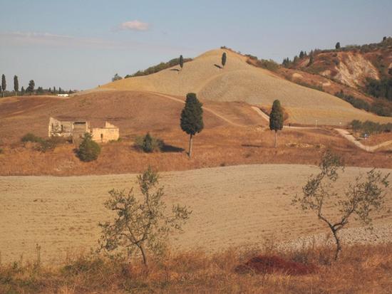 Borghi medievali in Toscana, Certaldo Alto (Firenze) (1830 clic)