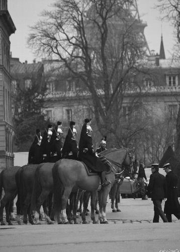 Milizia Francese (437 clic)