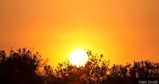 Tramonto d'estate 2012 (419 clic)