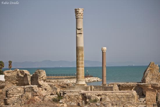 Le rovine di Cartagine (336 clic)