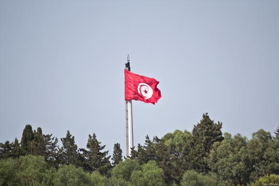 Bandiara tunisia (428 clic)