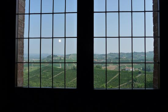 Vista dal Castello  - Grinzane cavour (1378 clic)