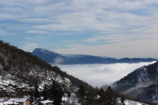 Materasso di nebbia - Bione (1316 clic)