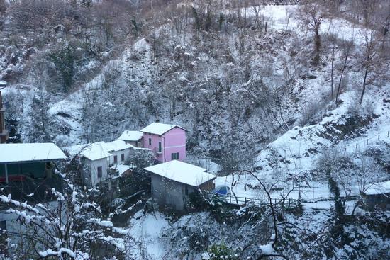Colore nella neve. - LUMEZZANE - inserita il 10-Dec-12