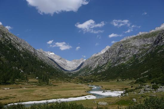 Il fiume Chiese - Val di fumo (2190 clic)