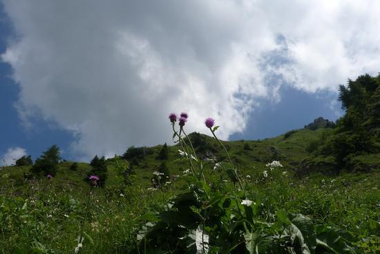 monte Maniva - San colombano (1147 clic)
