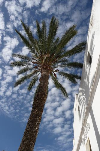 Il cielo di Spagna (324 clic)