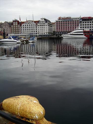 Alesund - Norvegia  (577 clic)