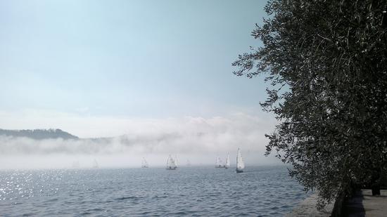 Vele che escono dalla nebbia - Salò (1498 clic)