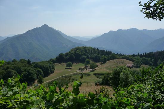 Caregno - fattoria montana - Gardone val trompia (1422 clic)