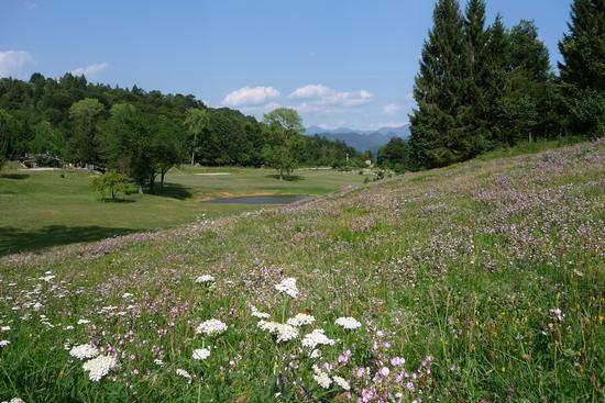 Altopiano di Lo - Bione (1483 clic)