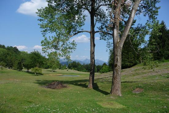Altopiano di Lo - Bione (1245 clic)