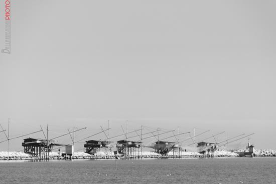 Diga del porto - Sottomarina (2031 clic)