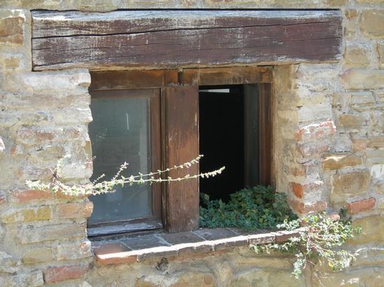 finestra a serra san quirico (1781 clic)