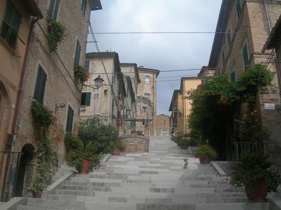 Corinaldo, via del Pozzo della Polenta (2301 clic)