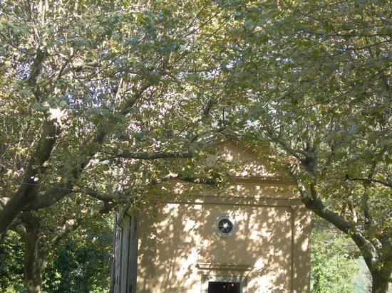 Chiesa di S.Anna di Stazzema (1194 clic)