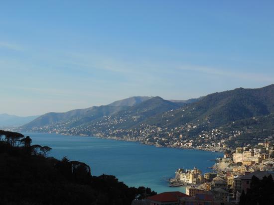 Golfo Paradiso - Camogli (3563 clic)