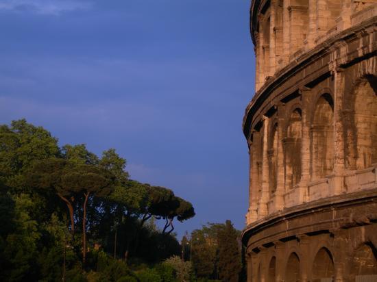 Roma, pini e colosseo (1338 clic)