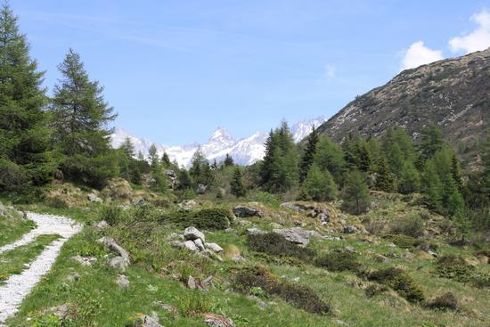 verso il lago salerno - Cevo (1572 clic)