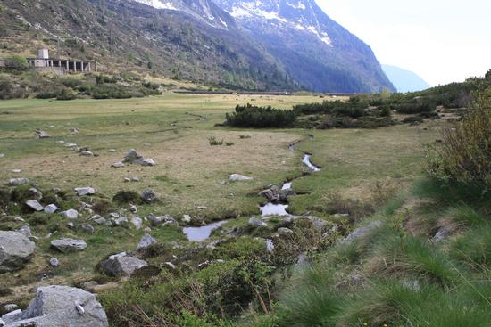 lago di macesso prosciugato - Cevo (1463 clic)