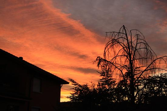 tramonto - Trezzo sull'adda (1308 clic)