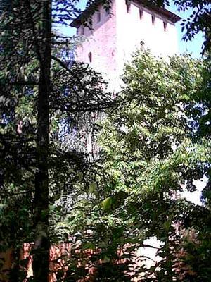 Torre dei Bolognesi - Nonantola (1156 clic)