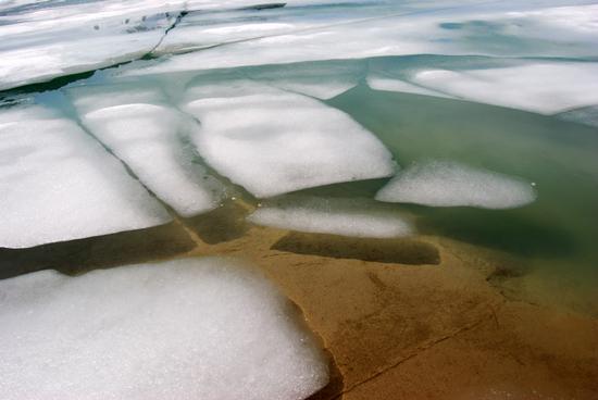 Iceberg nei laghi alpini - Formazza (2139 clic)