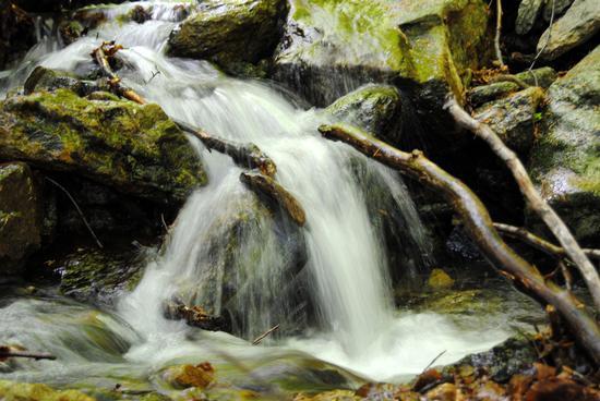 torrente nel mezzo della Val Grande - Cossogno (1374 clic)