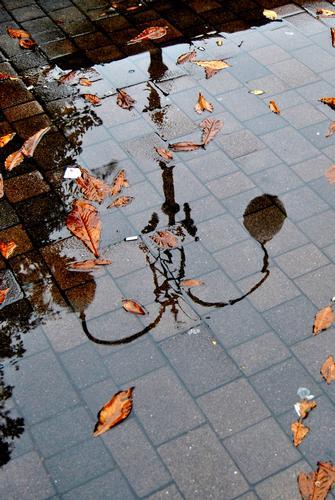La pioggia. - Verbania (2496 clic)