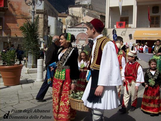 Domenica delle Palme - Piana degli albanesi (1310 clic)