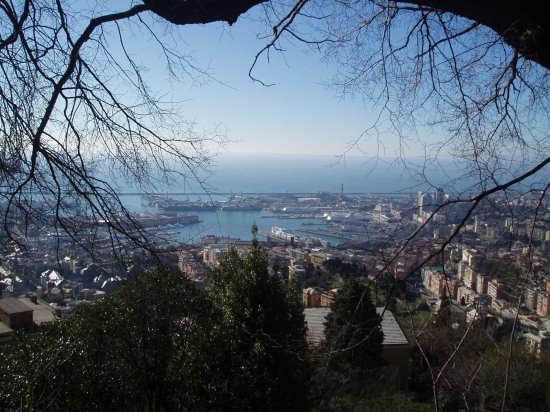Il porto di Genova da Righi (7095 clic)
