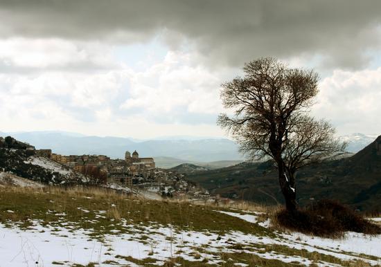 Colori d'inverno - Petralia sottana (1585 clic)