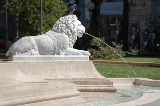 Elemento della Fontana dei Leoni - Piazza Mazzini - Santa maria capua vetere (1978 clic)