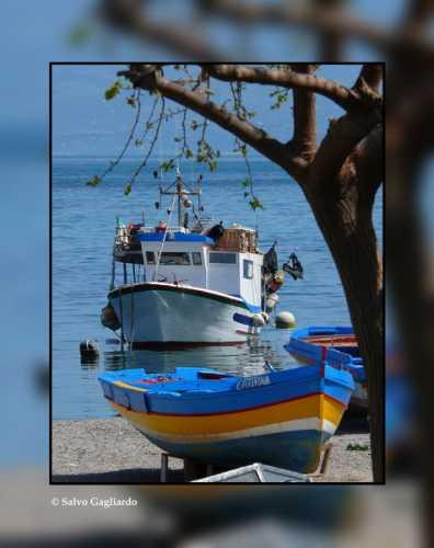 Barche - Trabia (3787 clic)