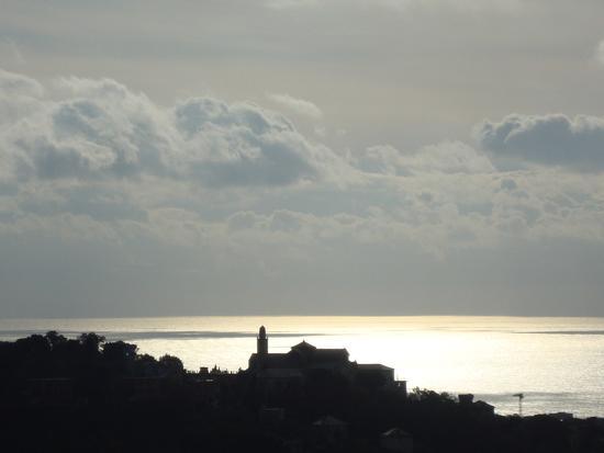 zena si sveglia - Genova (2118 clic)