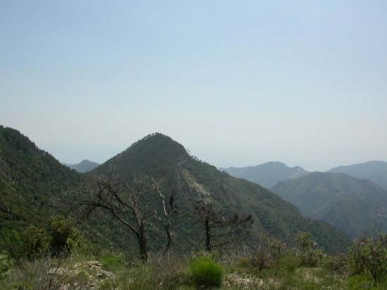 La Sella dei due Abegli - Dolceacqua (3238 clic)