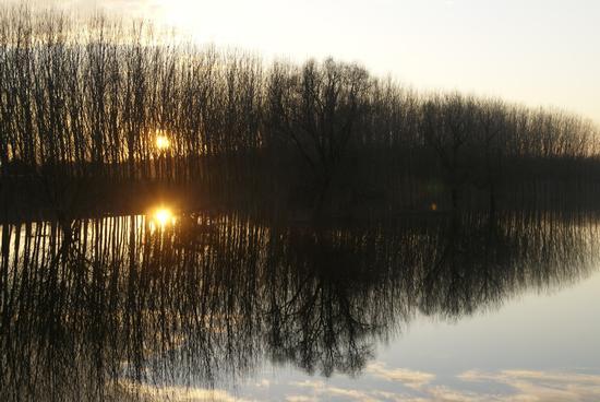 fiume Po (167 clic)