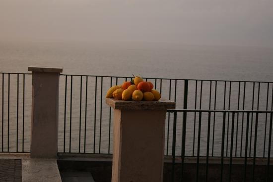 Frutta (373 clic)