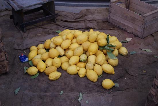 Limoni di SORRENTO (562 clic)