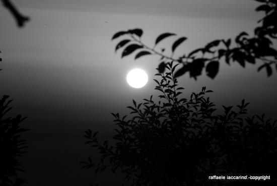 tramonto - Sorrento (508 clic)