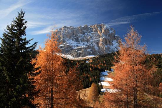 Autunno al Sassolungo - Selva di val gardena (10368 clic)