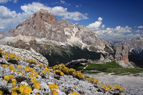 Le Cinque Torri e la Tofana di Rozes - Cortina d'ampezzo (2345 clic)