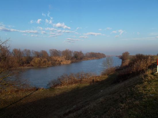 Argine del fiume Reno - Sant'alberto (1220 clic)