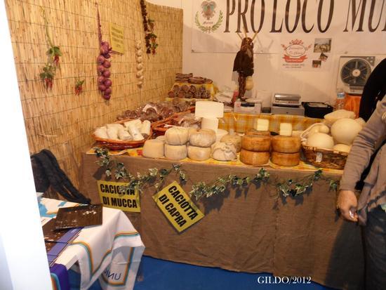 Sapori della Basilicata - Gaeta (2030 clic)