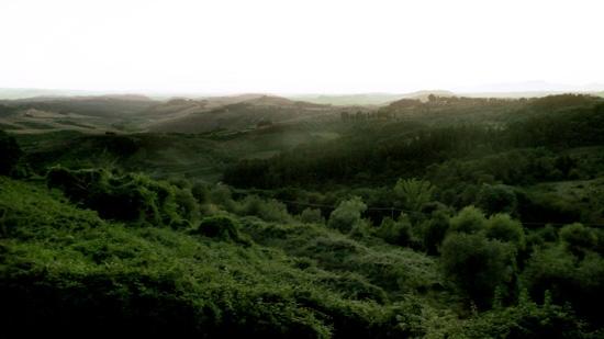 Paesaggio - Palaia (2178 clic)