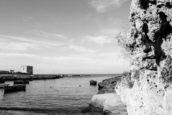 barca - San vito polignano (813 clic)