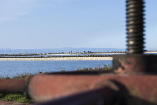 saline - TRINITAPOLI - inserita il 25-Jun-14