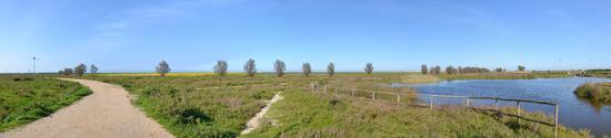 panoramica zona umida - TRINITAPOLI - inserita il 25-Jun-14