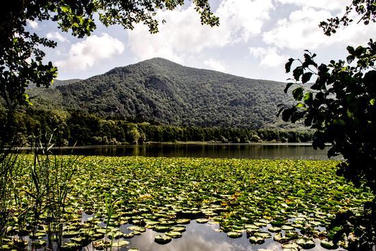 laghi di monticchio - MONTICCHIO - inserita il 23-Sep-13